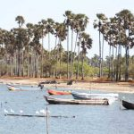 A la découverte du Sri Lanka