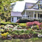 Décoration de jardin originale : Top 6 des meilleurs styles à adopter