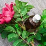 Le parfum, ce voile invisible synonyme de bien-être