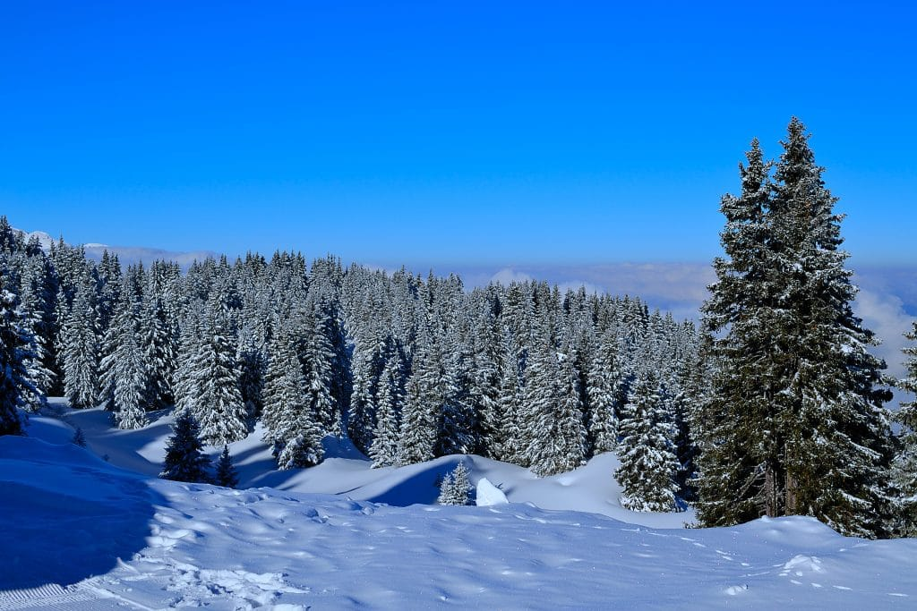 Quelles autres activités faire à la montagne ?