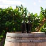 Quel est le meilleur vins portugais : mes conseils pour choisir