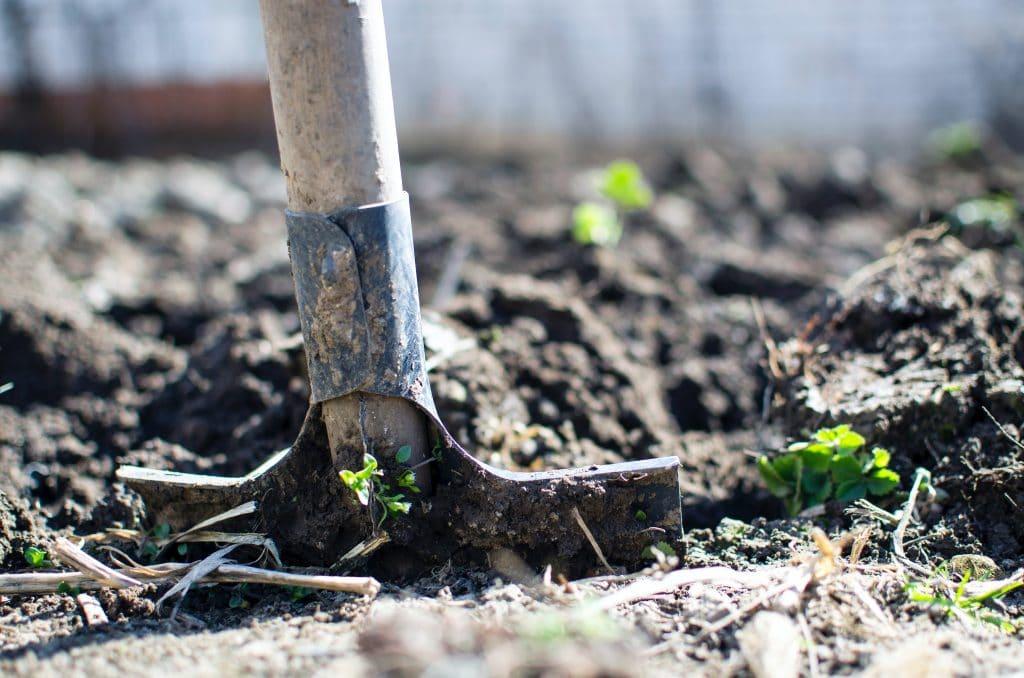 Comment réussir l'aménagement d'un petit jardin ?