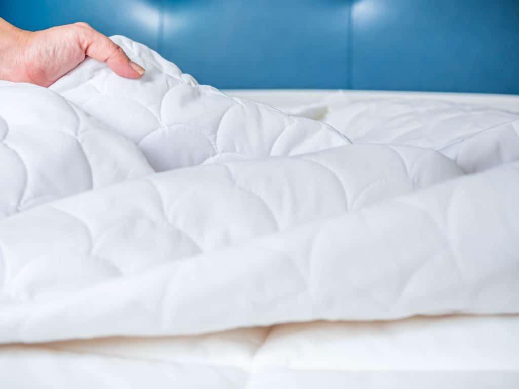 Comment se débarrasser des punaises de lit rapidement ?